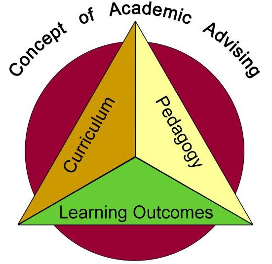 Professionals Academics: Professional Development
